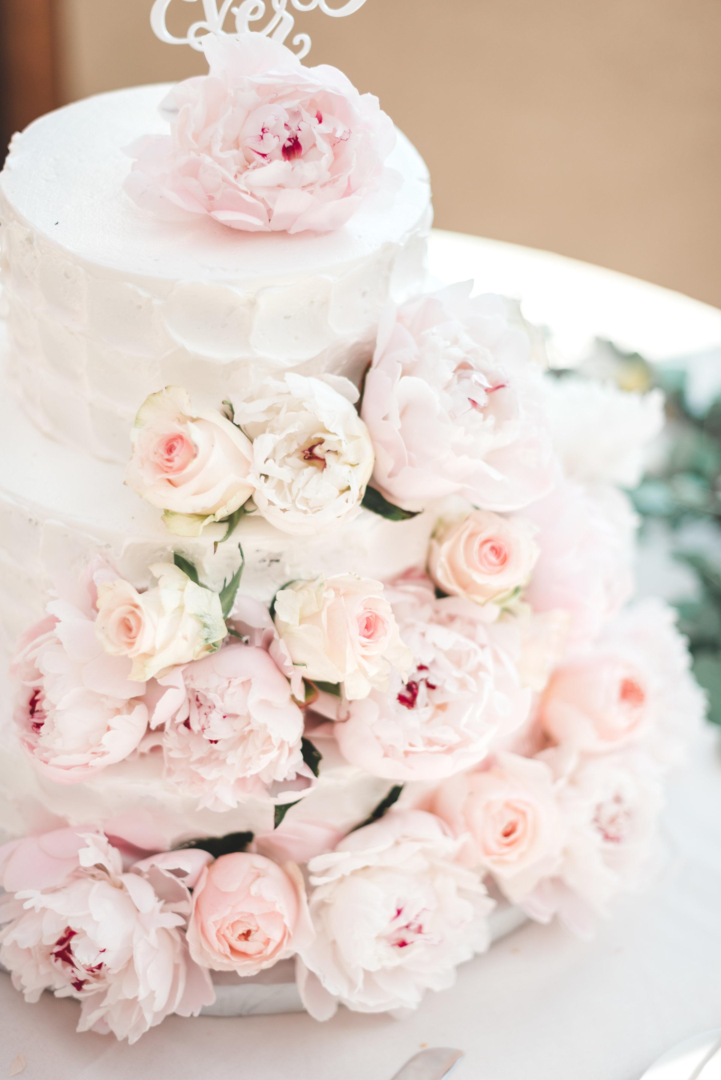 Wachtel-Wedding-0534.jpg