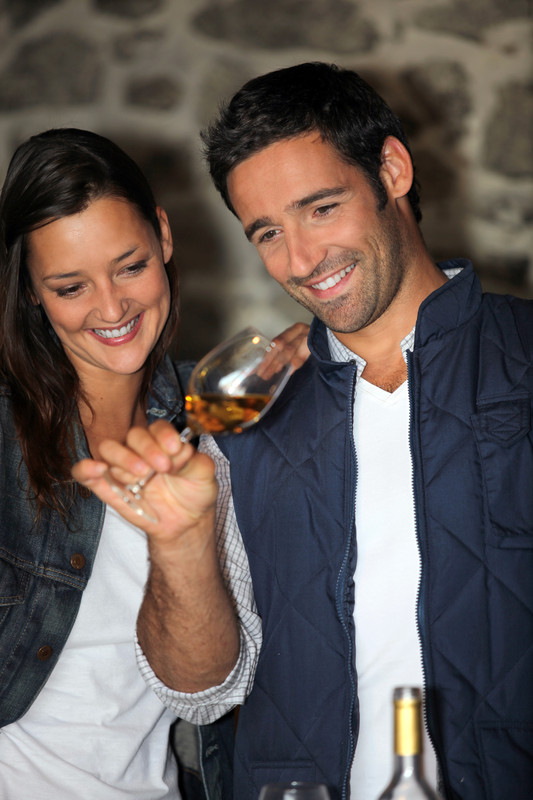 Visit the official site of the  Lake Michigan Shore Wine Trail