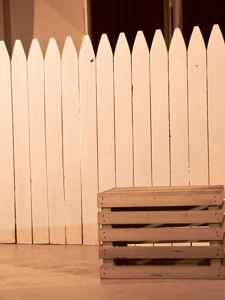 The Whitewashed Fence from  The Adventures of Tom Sawyer  Spring 2013