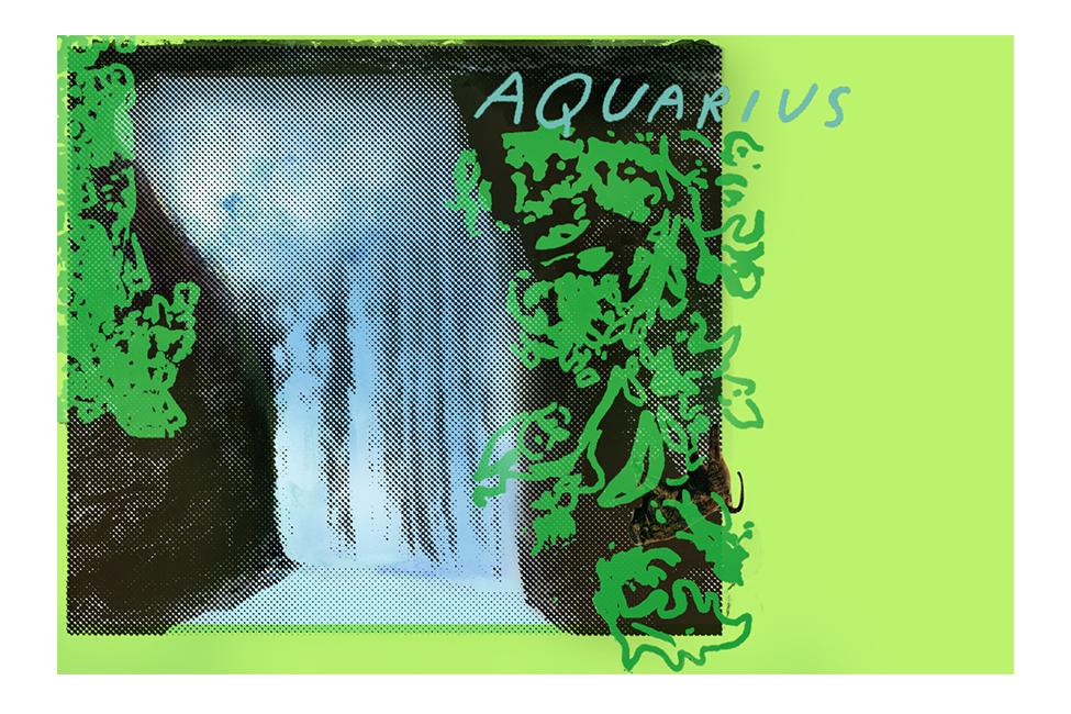 horowitz_illustration_aquarius.jpg