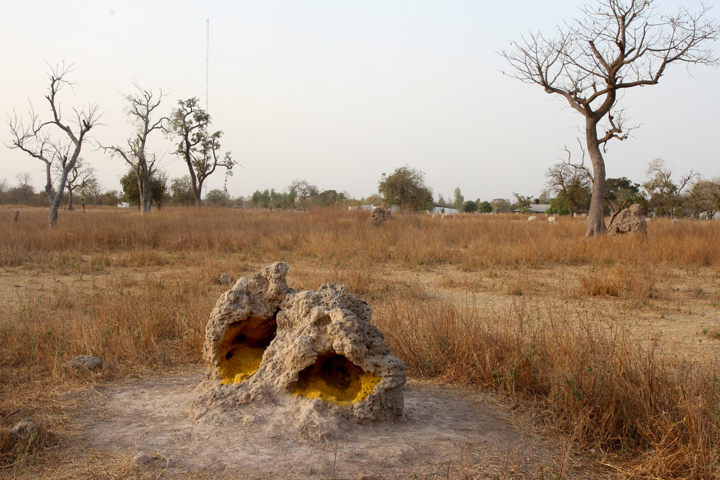 A termite mound painted with natural pigment.