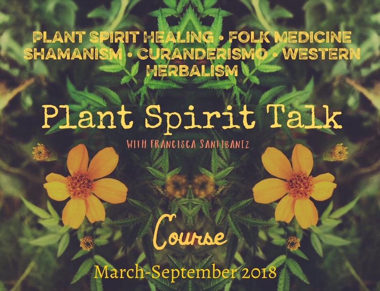 Announcing PLANT SPIRIT TALK Course!
