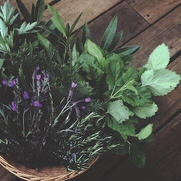 herbal basket.jpg