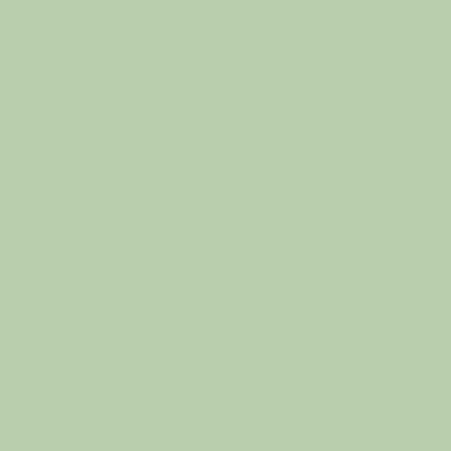 Pale Green (Gloss)