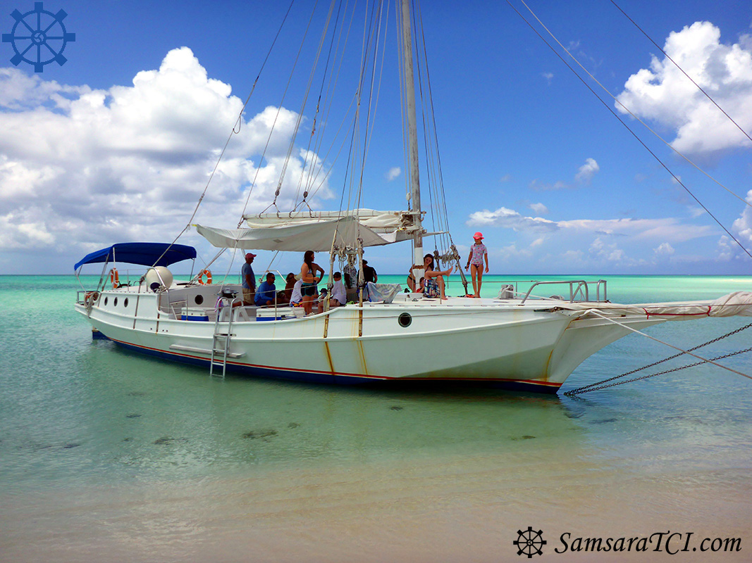 P1210490_edited_web_logo_site.jpg