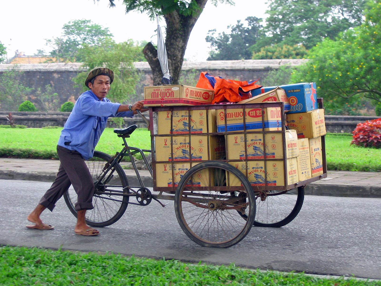 Hue bike of boxes.jpg