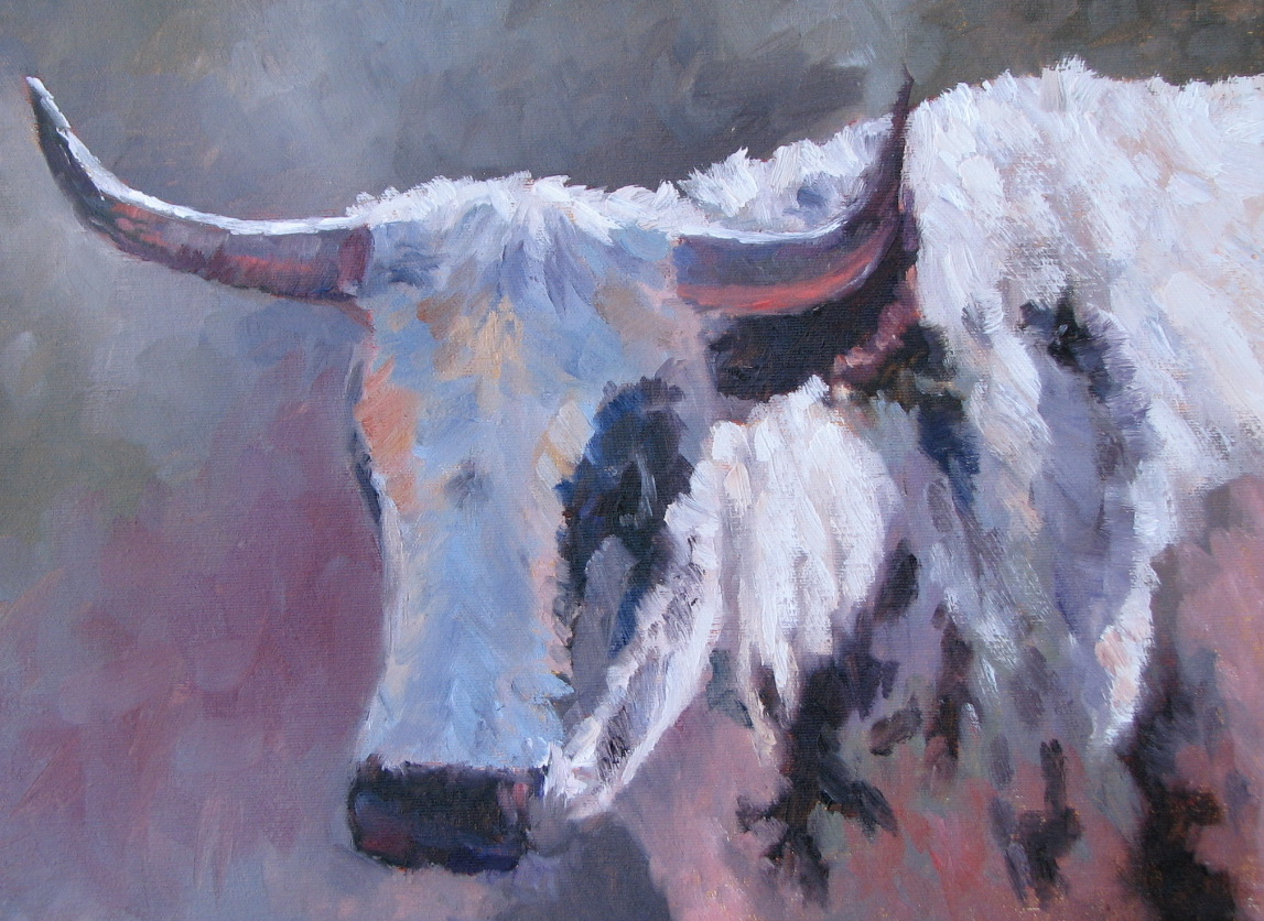 "Texas Steer  12"" x 16"""