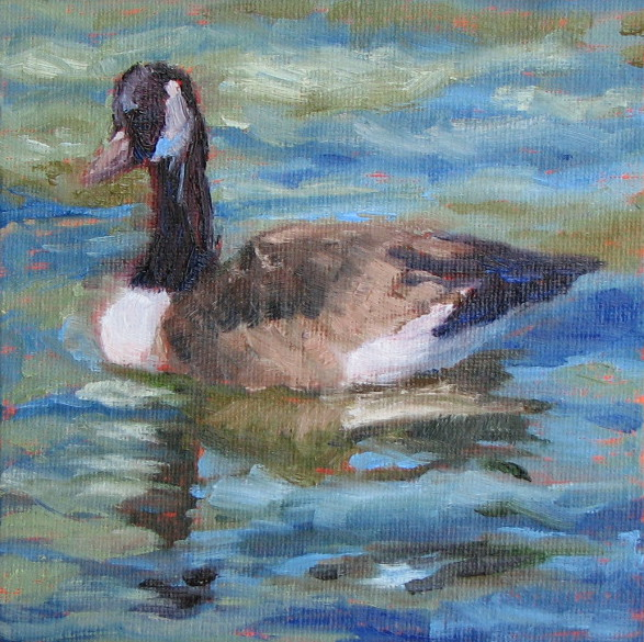 "Canadian Goose  6"" x 6""  SOLD"