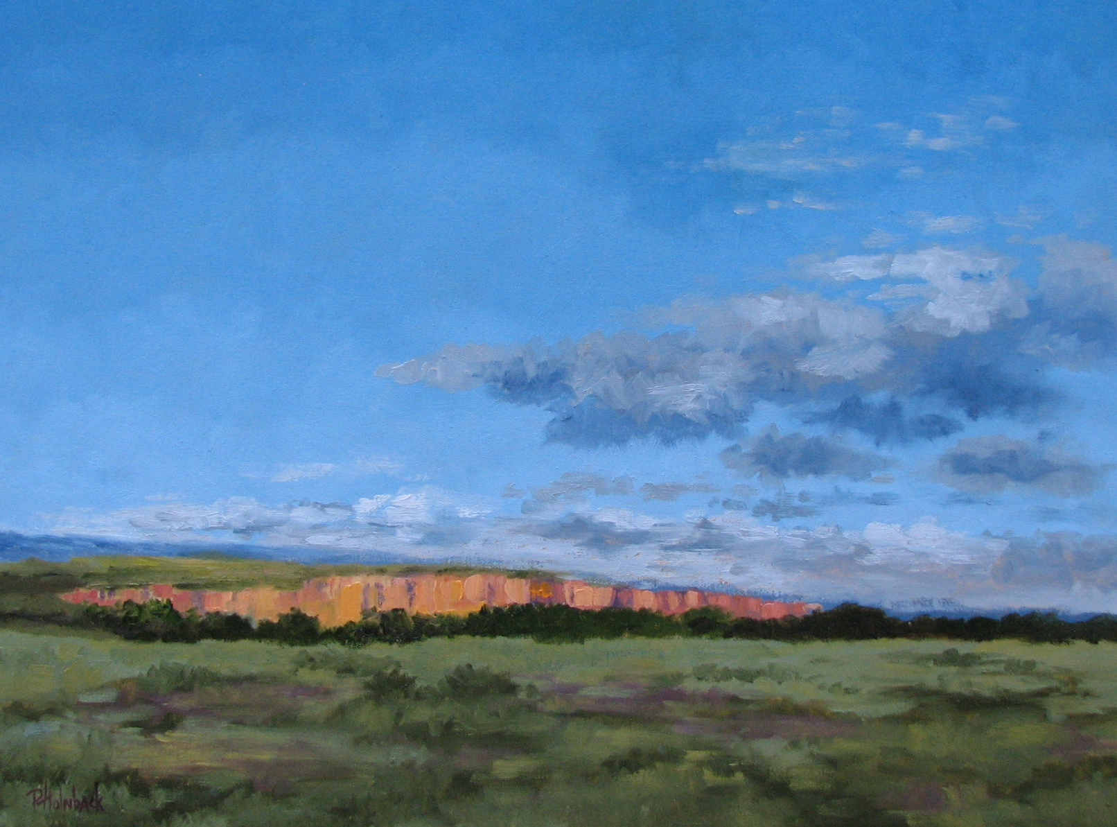 """Distant Light  18"""" x 24""""  SOLD"""