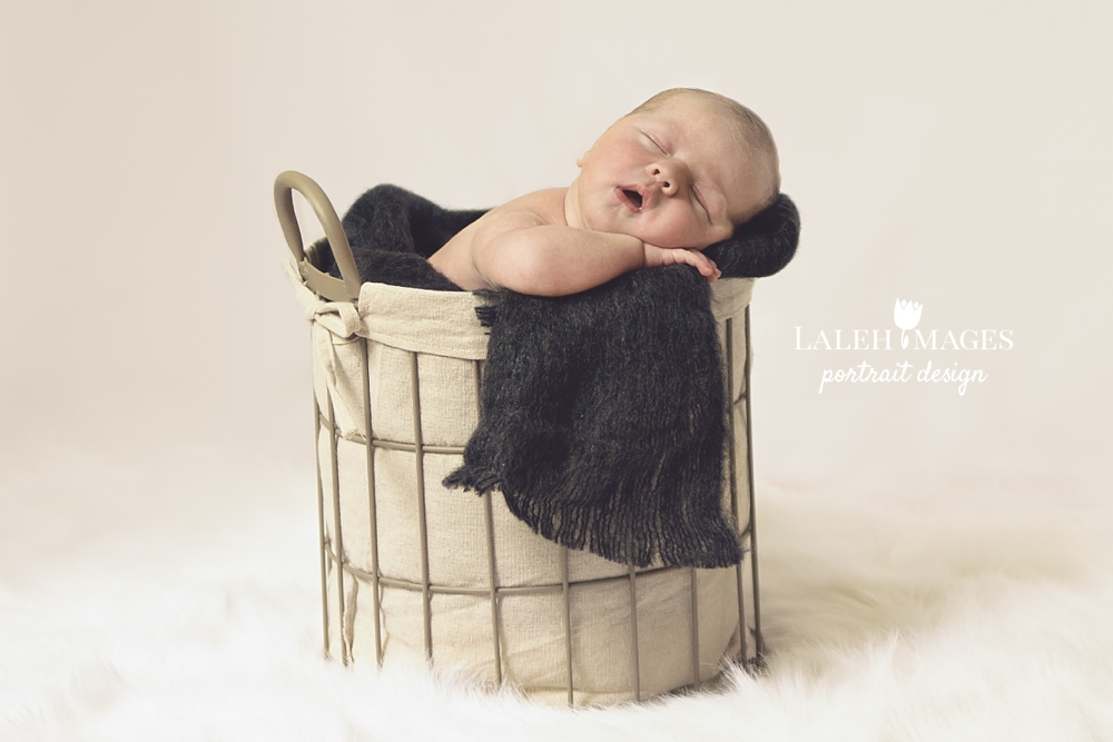 Newborn Photo Baby Max