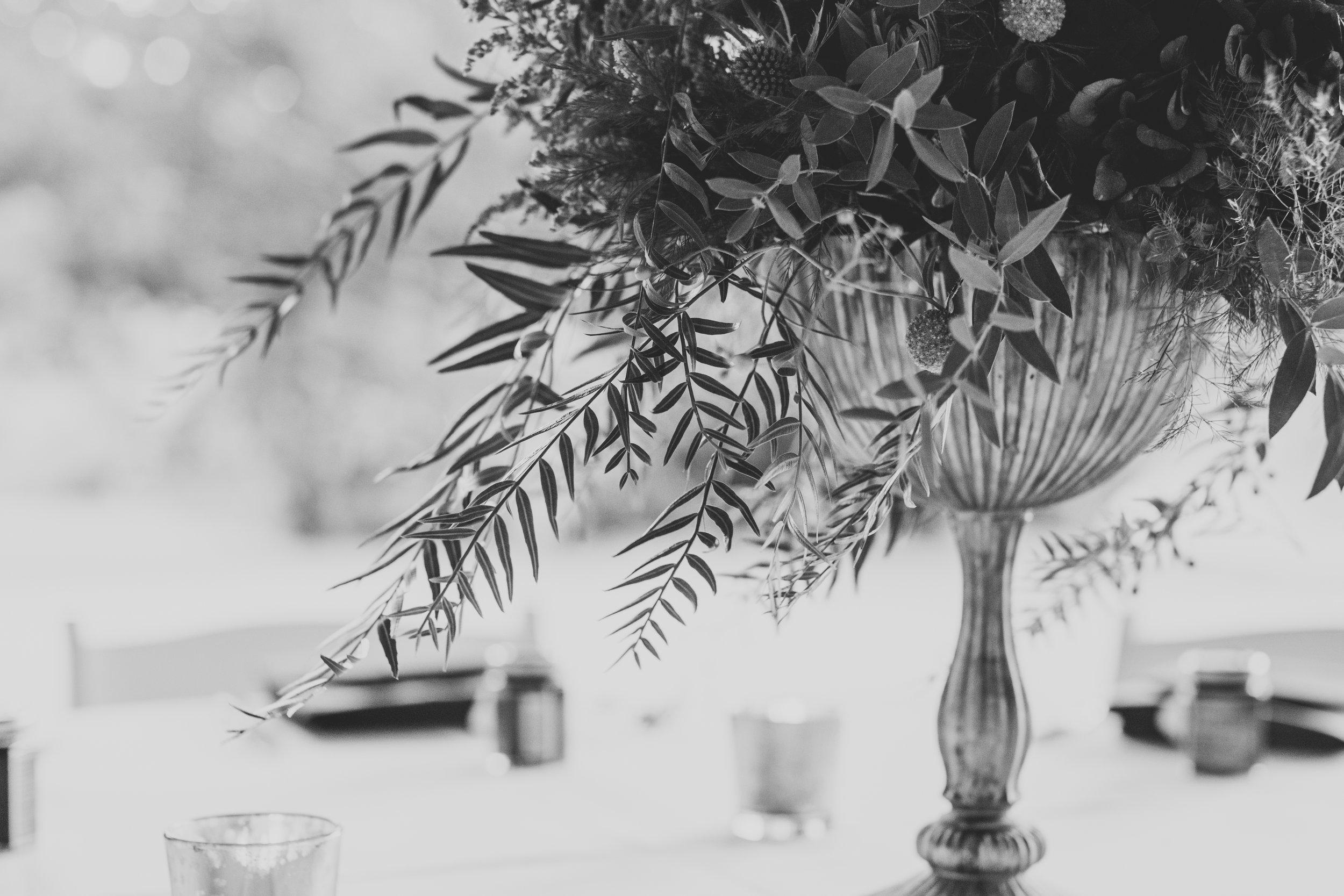 julia-garrett-wedding-bw-87.jpg