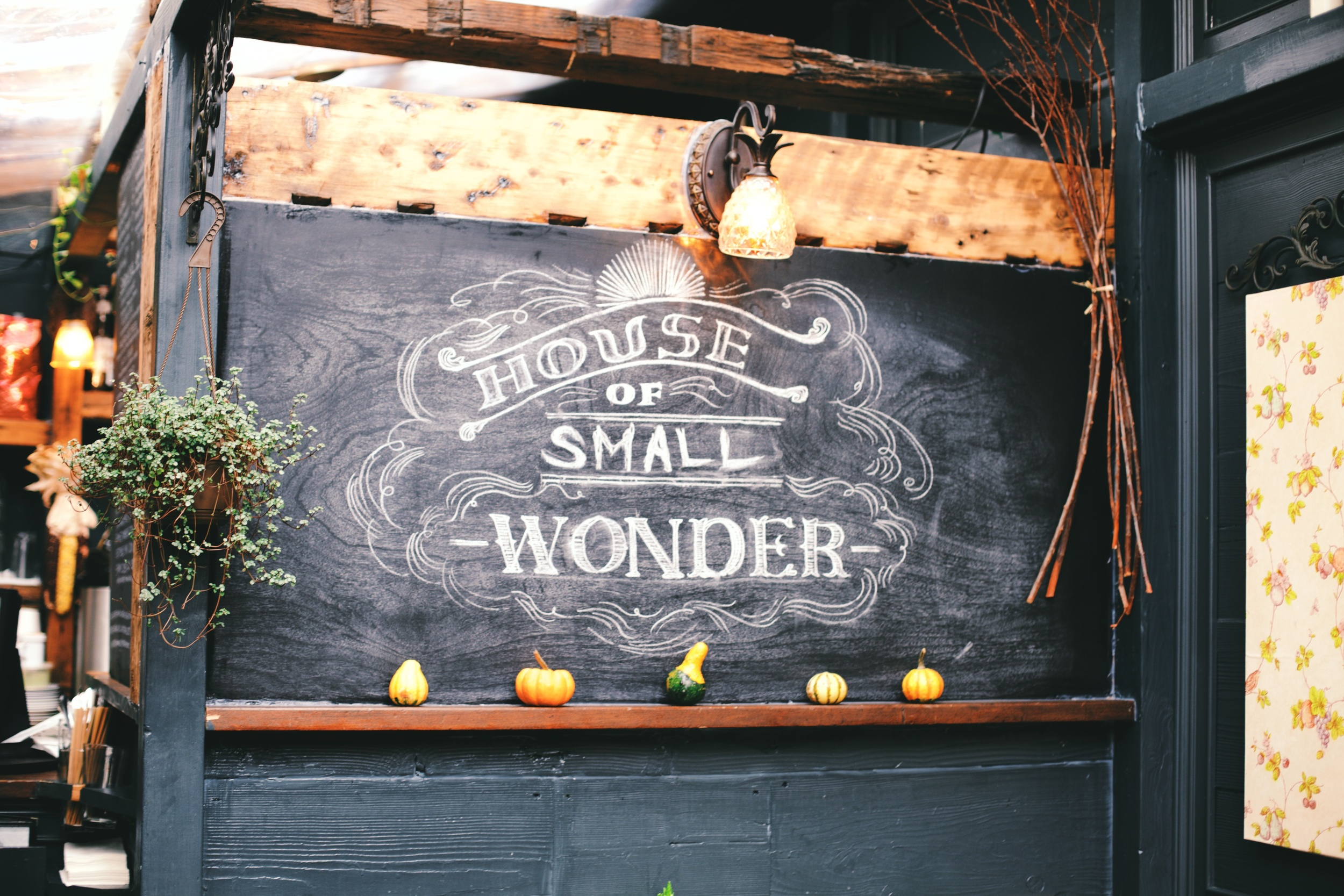 House_Of_Small_Wonder_1
