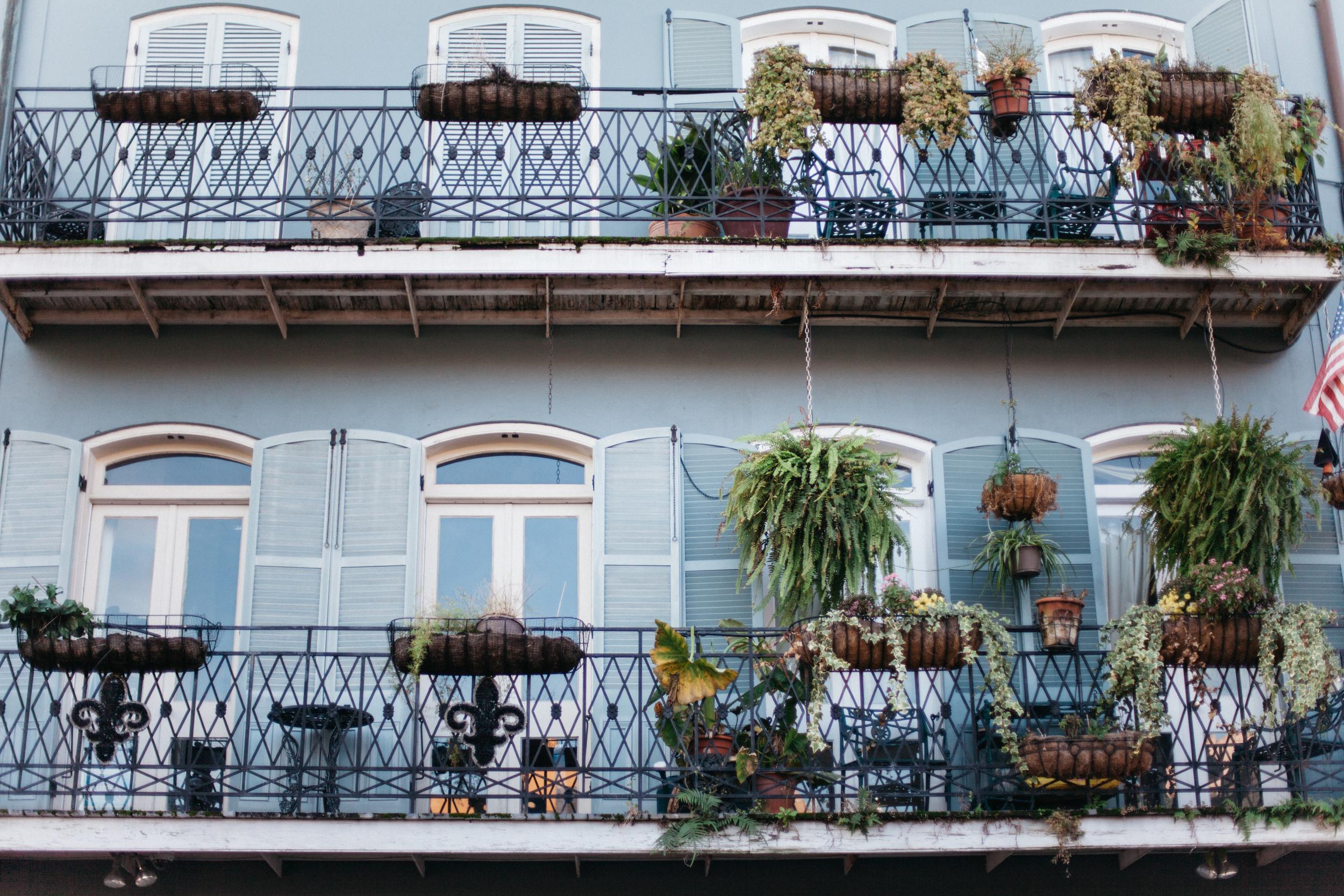 French Quarter_le-sycomore9