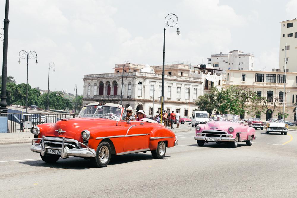 Le-Sycomore-Cuban-Havana-Malecon-5 2.jpg