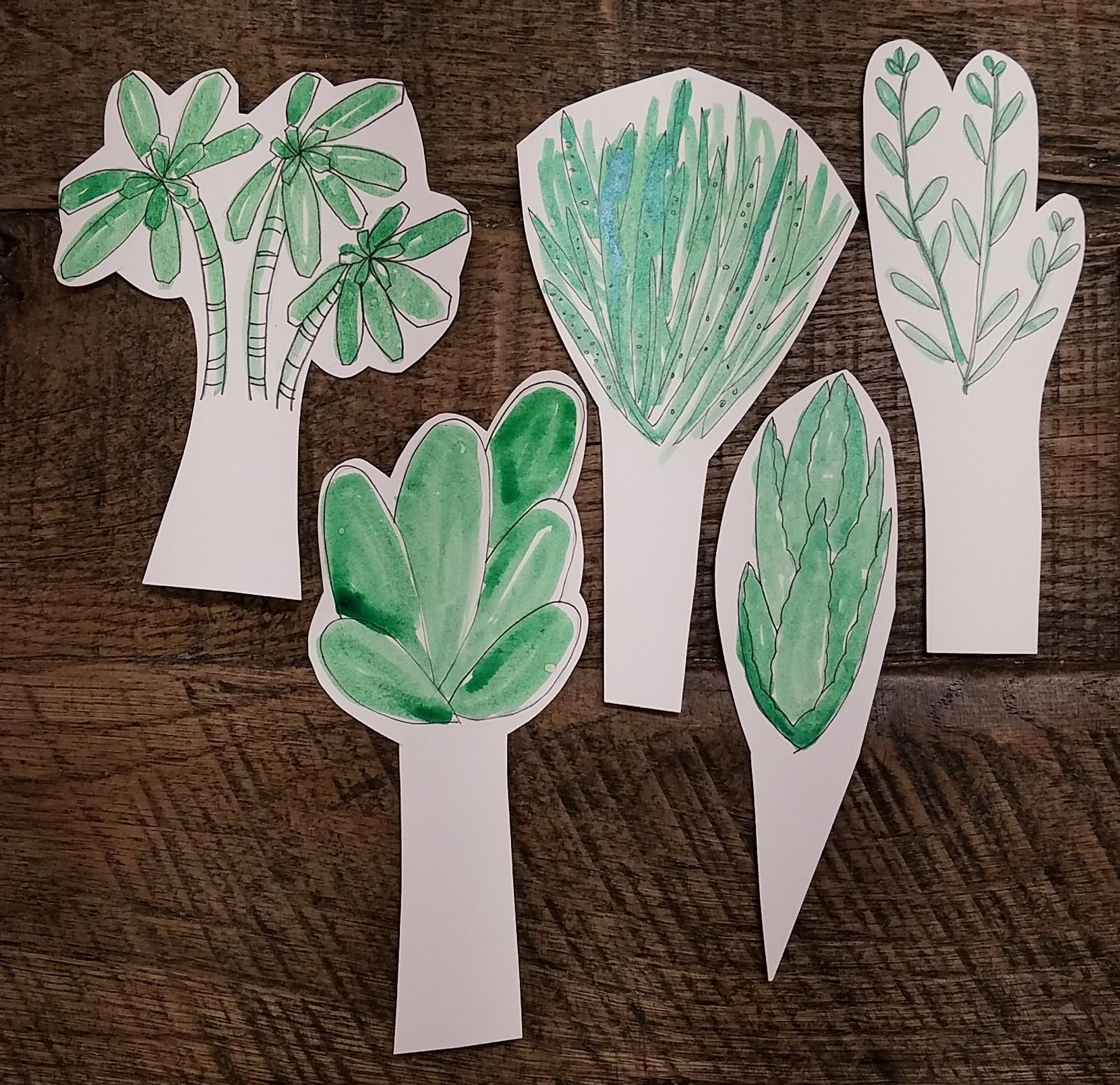 SucculentDrawings.jpg