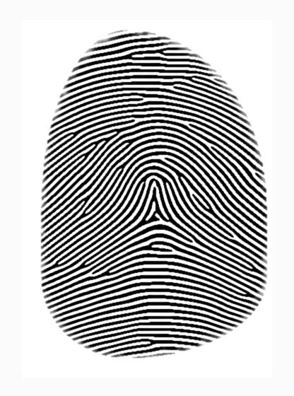 fingerprint arch.jpg