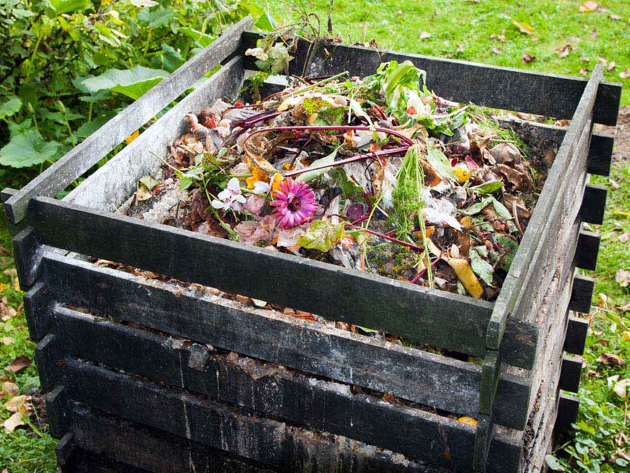 GOOD OLD FASHIONED COMPOST HEAP