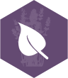 Eco_friendly_icon.png