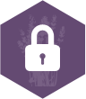 secure_icon.png