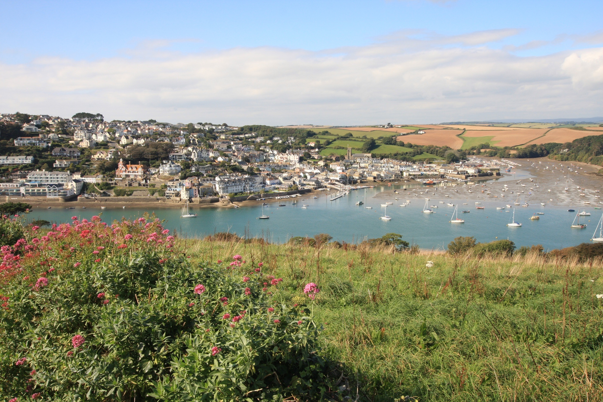 View of Salcombe from East Portlemouth