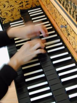 taste of harpsichord.jpg