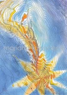 contour star - oil on paper