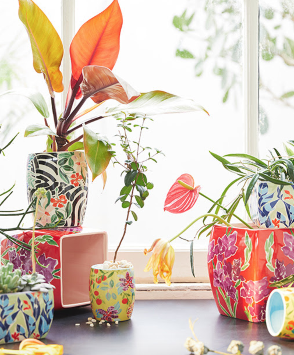 anthropologie-pots.jpg