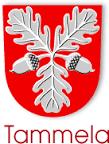 Tammelan kunta