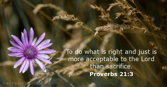 proverbs 12.jpg