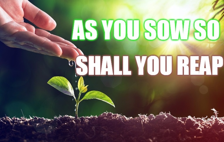 As You Sow So Shall You Reap.jpg