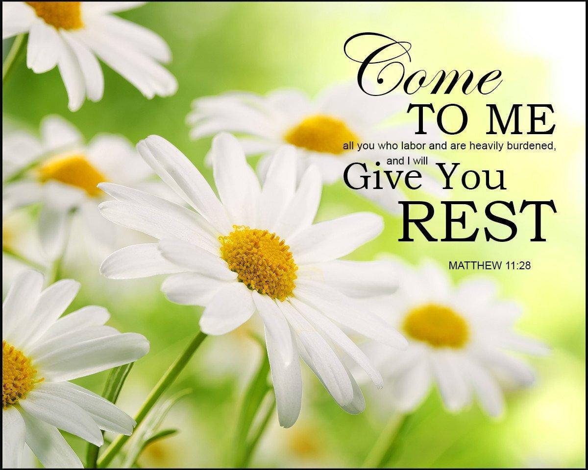 restful soul.jpg
