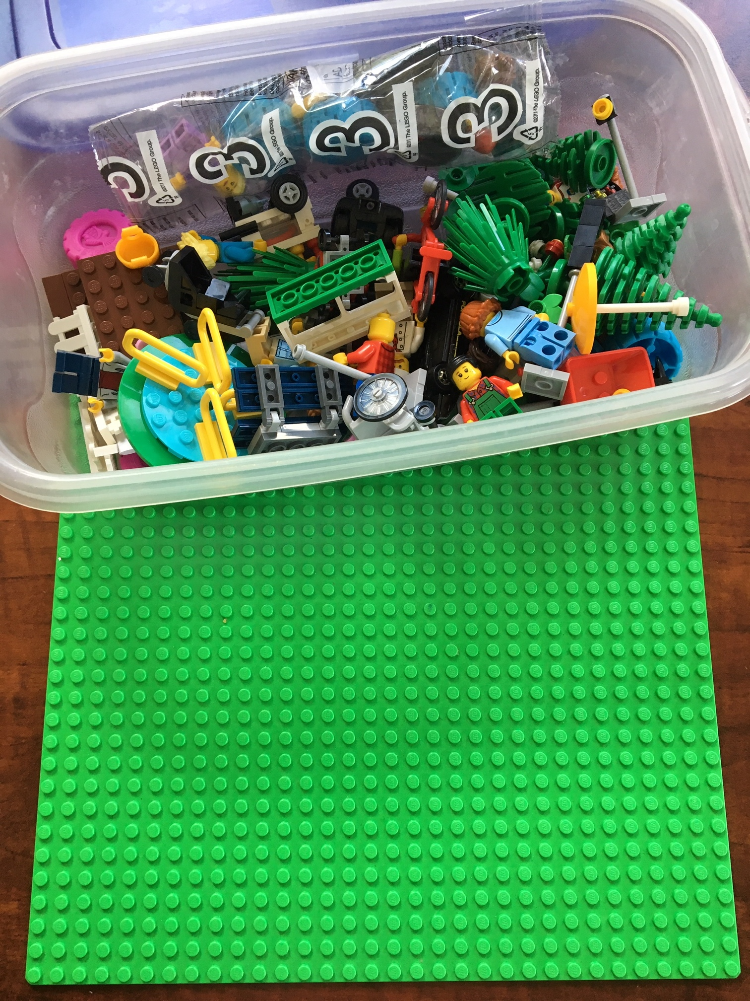 Grounded - Lego™ Pieces