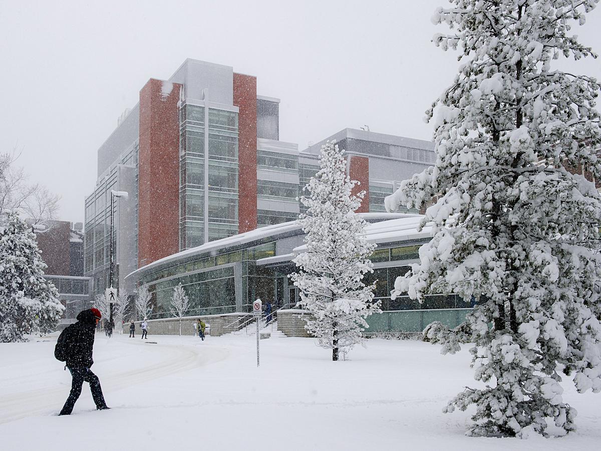 CCIS winter-1.jpg
