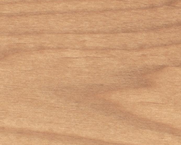 white alder wood.jpg