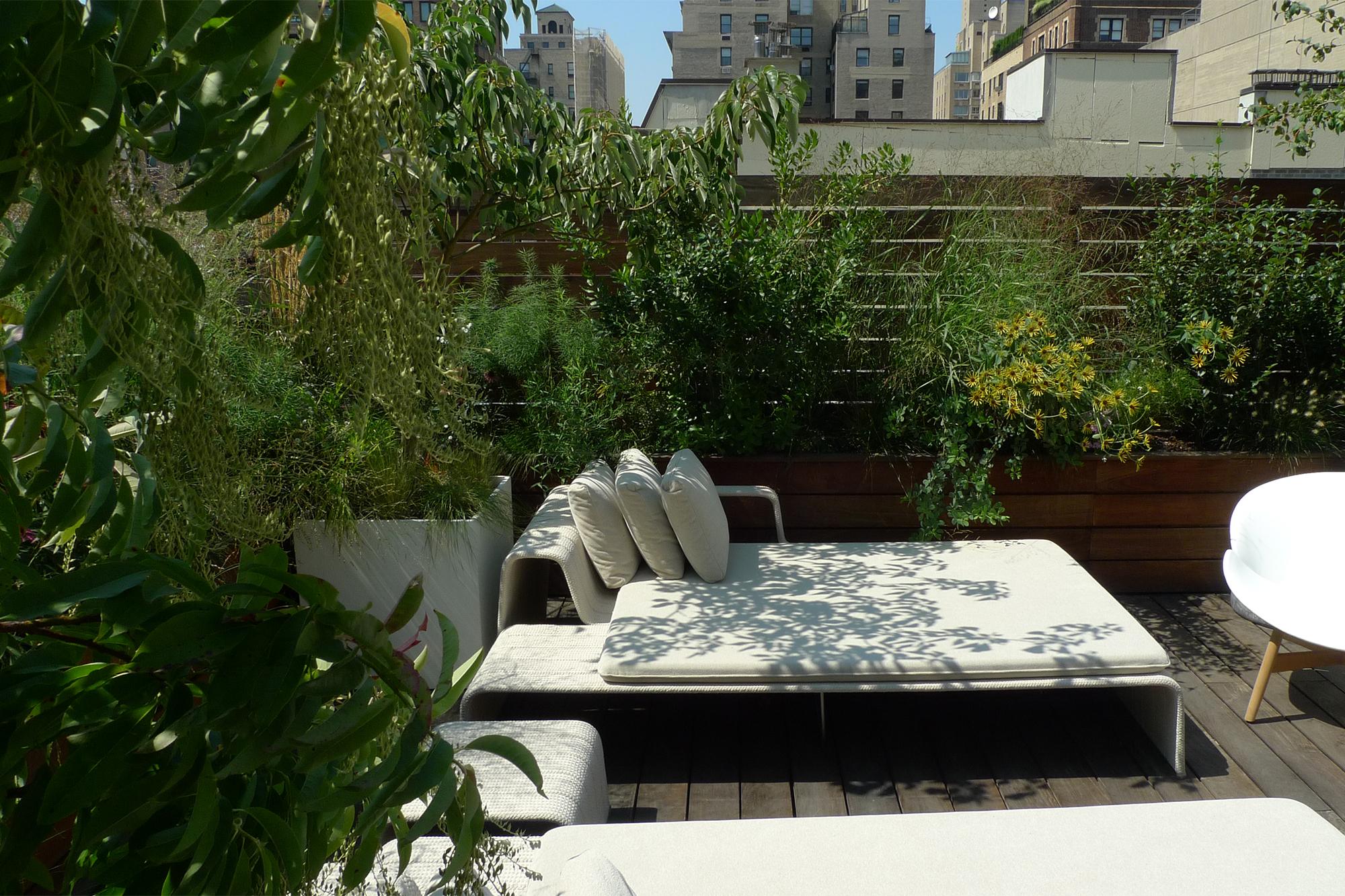 VERDANT, Casa Blanc, Mac Carbonell designer, Contemporary landscape, New York landscape design