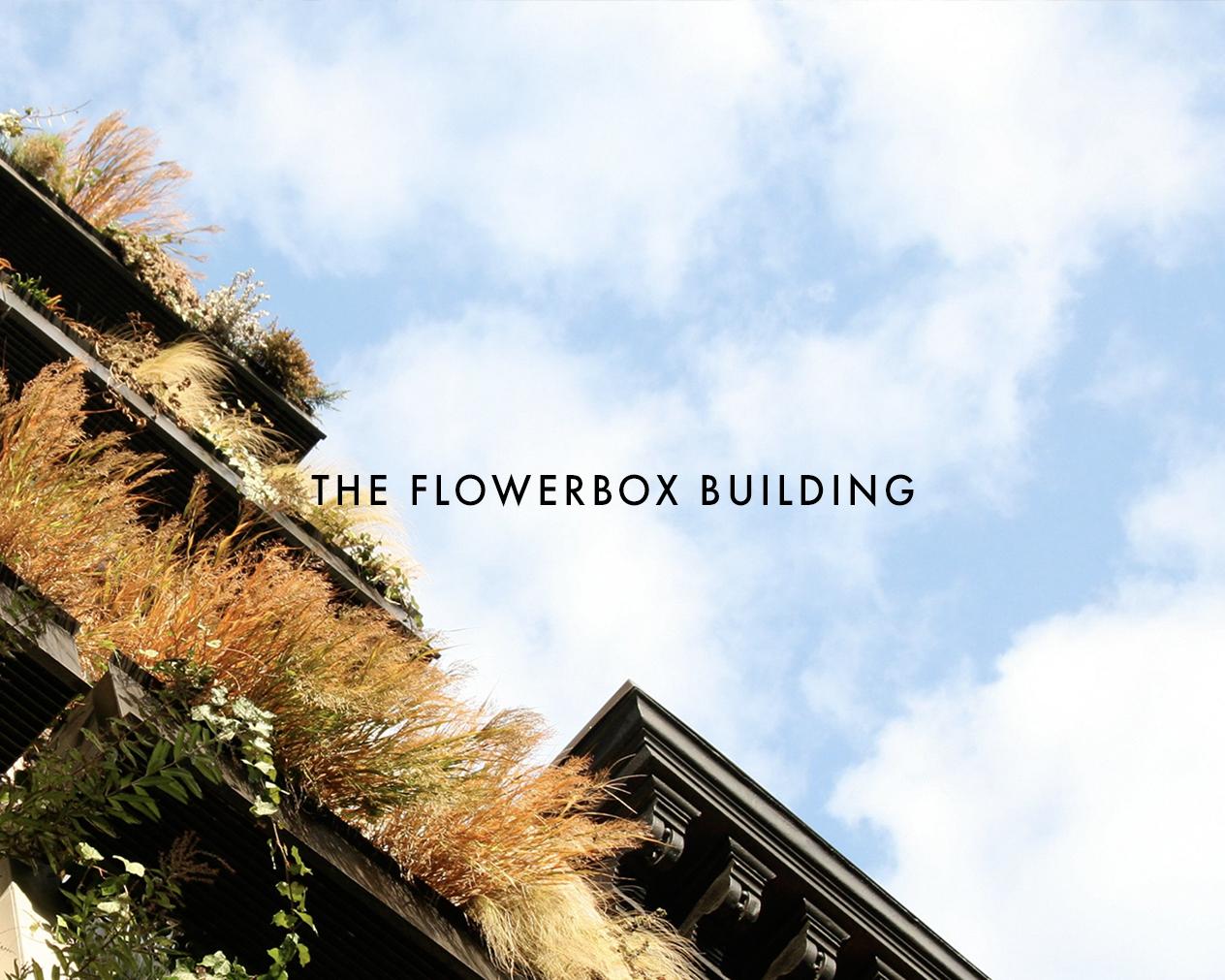 com3-flowerbox copy.jpg