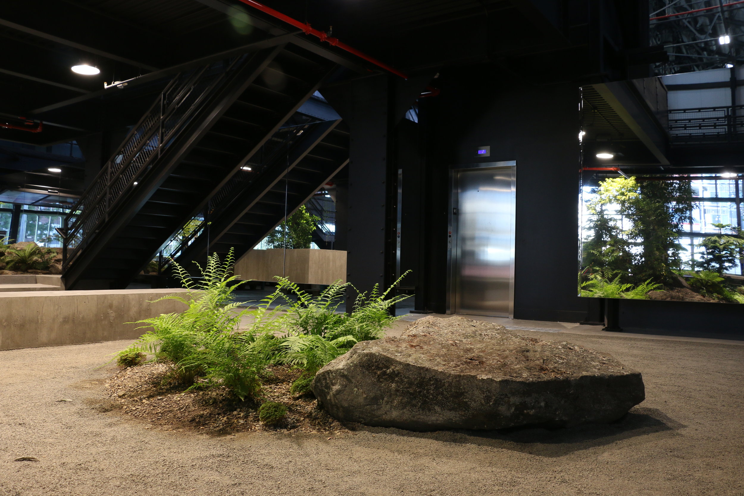 VERDANT,+The+Enclosed+Forest,+Mac+Carbonell+designer,+Contemporary+landscape,+New+York+landscape+design54.JPG