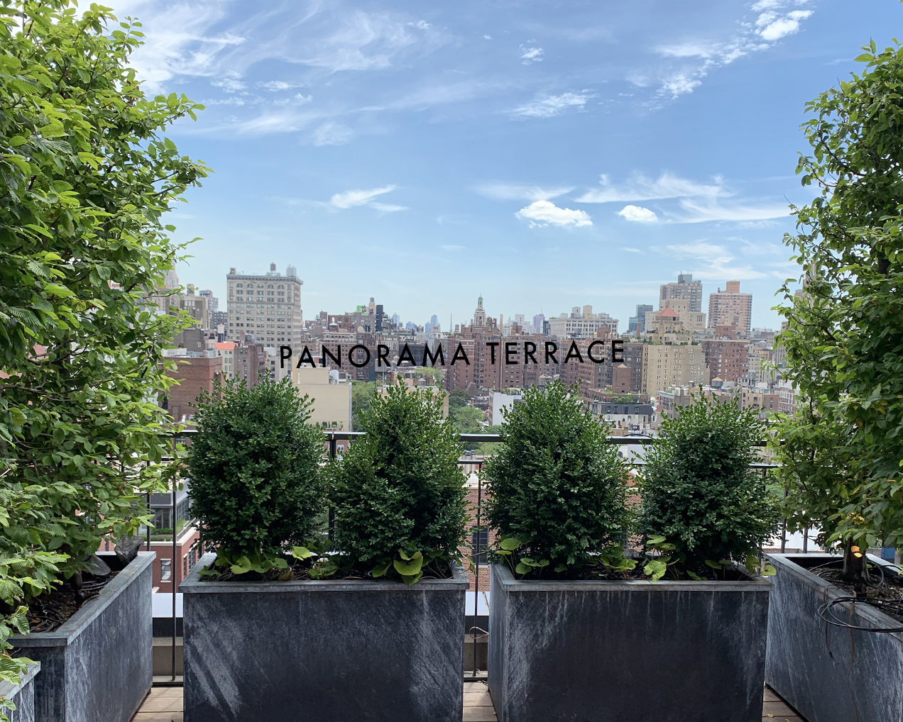 Panorama Terrace TITLE.jpg