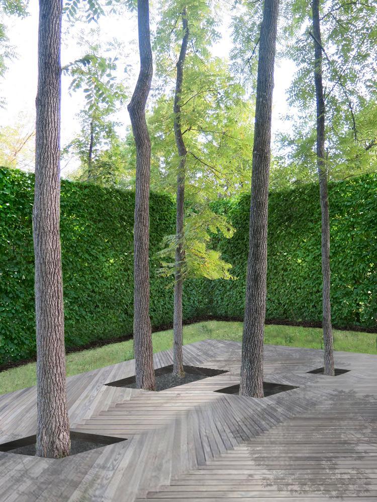 Walnut Trees in Decking.jpg