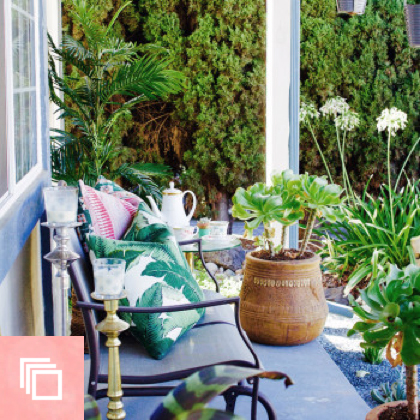 Before & After: A Ramshackle Glam Xeriscape