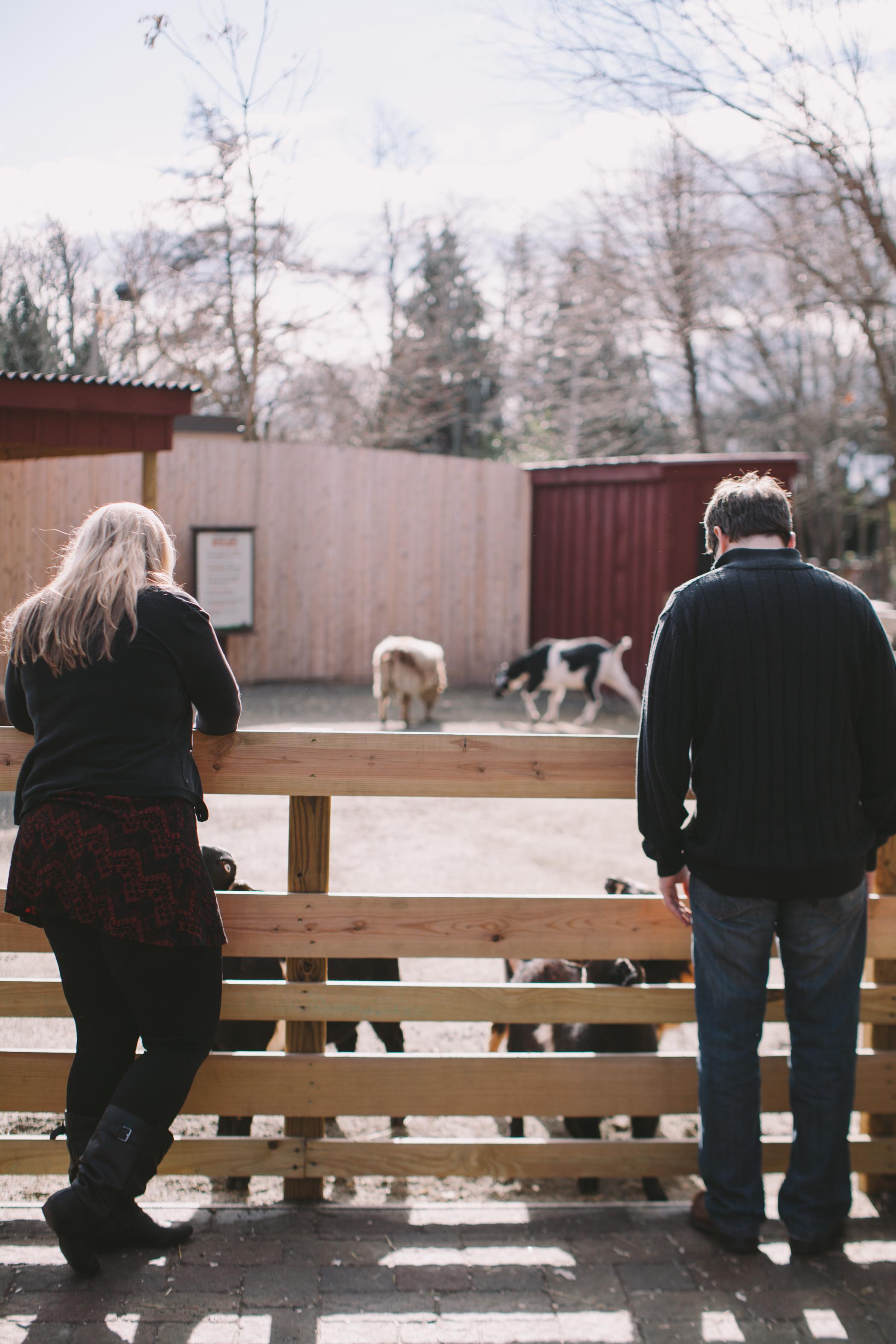 Mary & Bill engagement photos-67.jpg