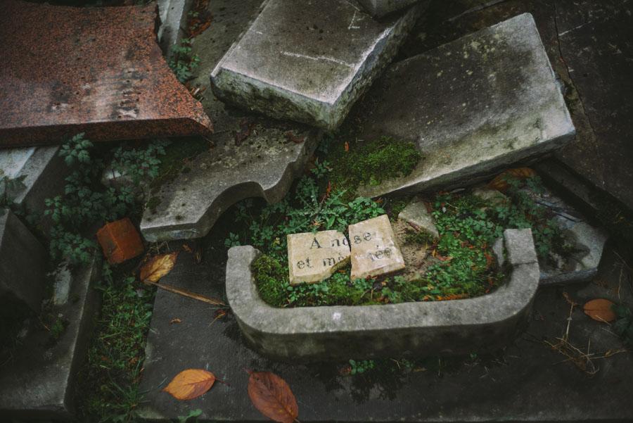 laeken cemetery-1005822.jpg