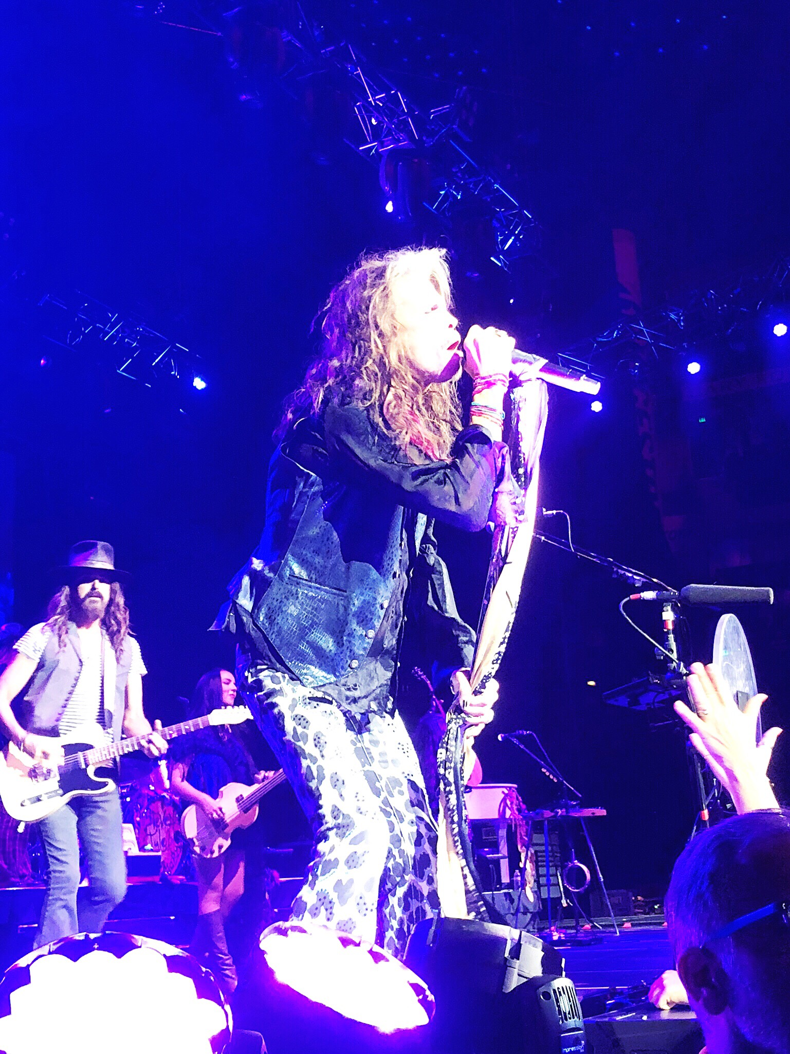 Why yes, that  is  Steven Tyler.