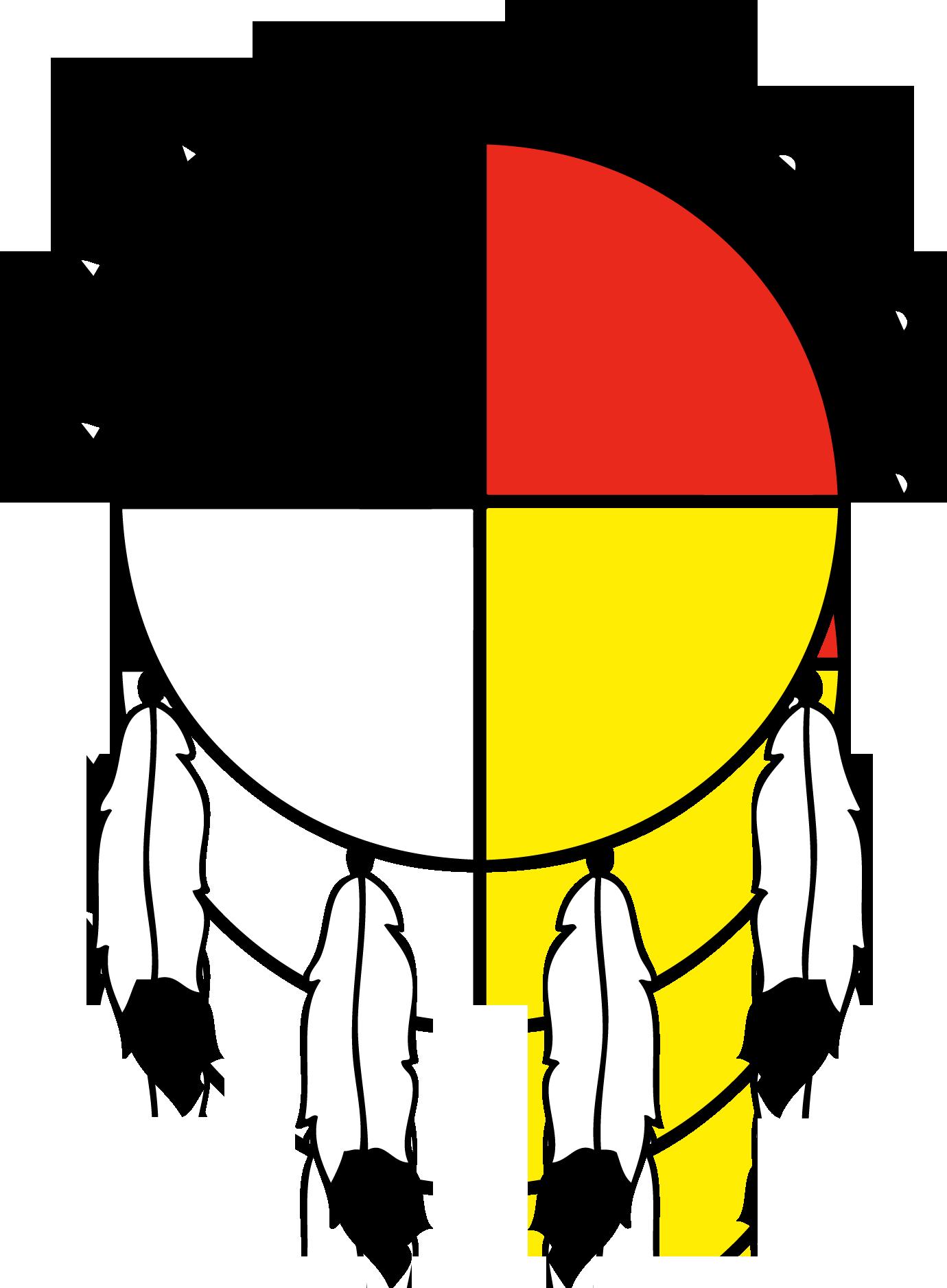 NAYA-logo_color_transparent background2.png