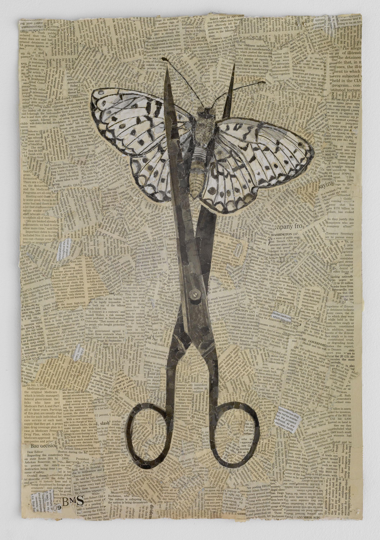 f) moth and scissor.jpg