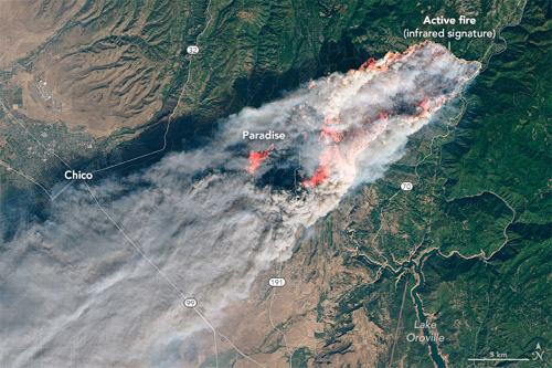 November 8, 2018 Landsat 8 image of the Campfire that consumed Paradise, CA. Image courtesy of  NASA Earth Observatory