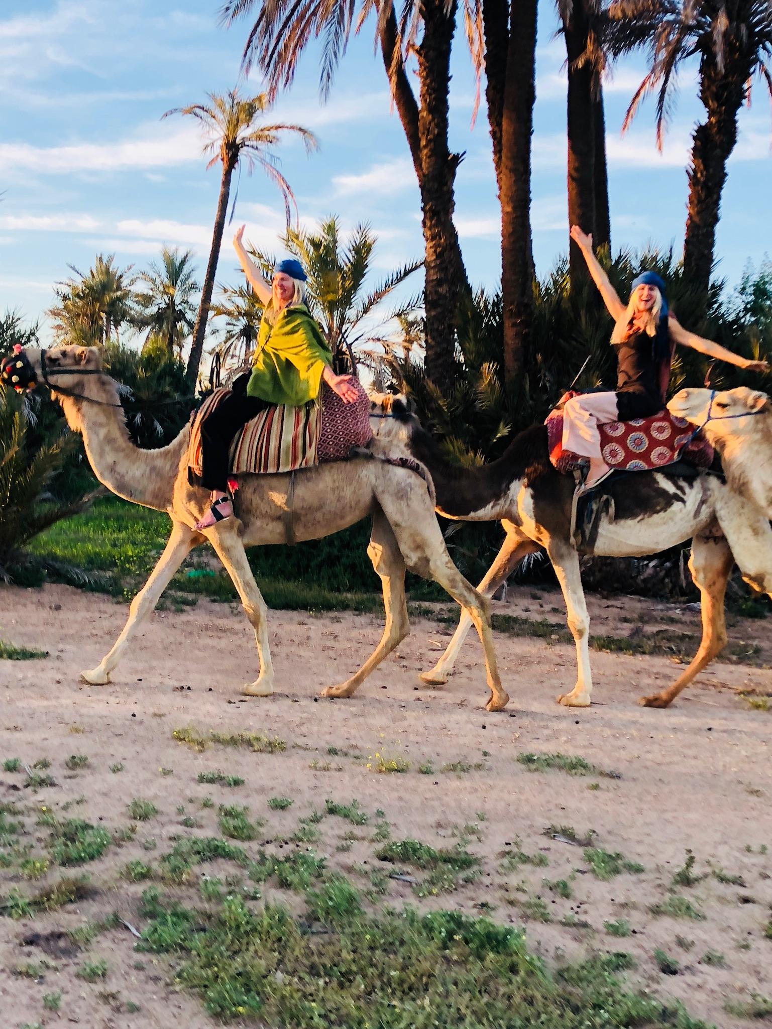 camel rides5.JPG