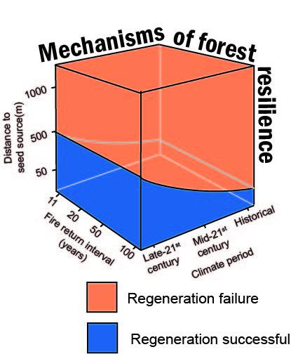 mechanisms of change.jpg