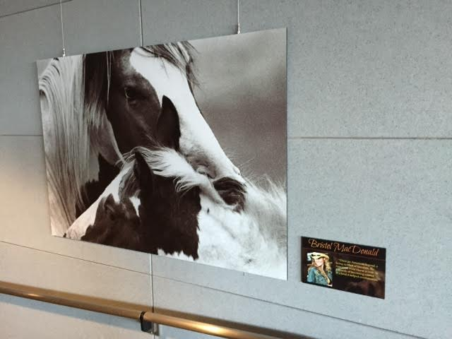 Denver International Airport Exhibit