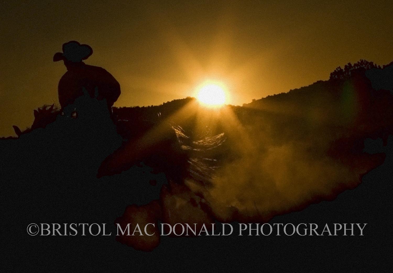 American Cowboy 12